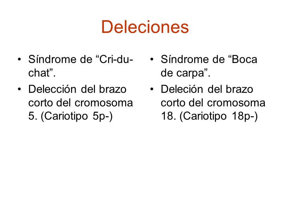 Deleciones Síndrome de Cri-du- chat. Delección del brazo corto del cromosoma 5. (Cariotipo 5p-) Síndrome de Boca de carpa. Deleción del brazo corto de