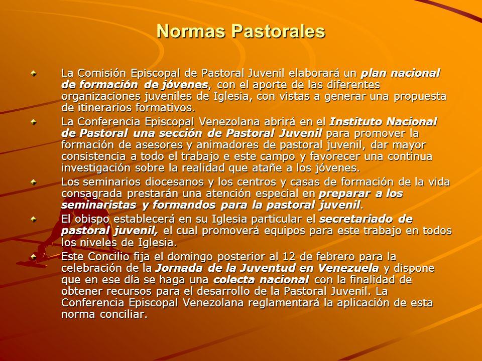 Normas Pastorales La Comisión Episcopal de Pastoral Juvenil elaborará un plan nacional de formación de jóvenes, con el aporte de las diferentes organi