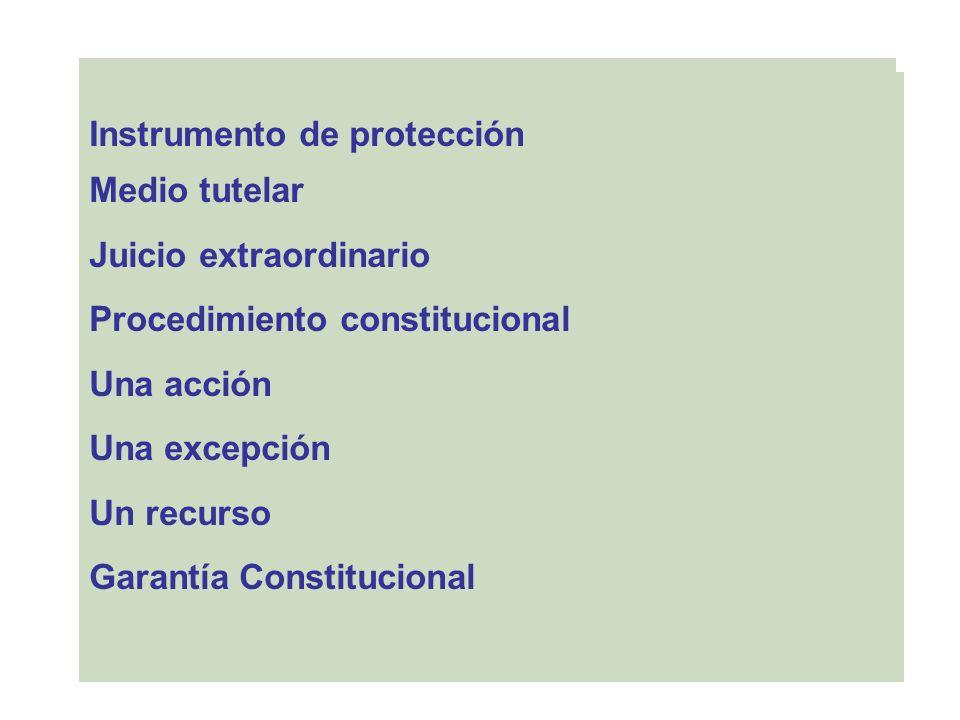 … Instrumento de protección Medio tutelar Juicio extraordinario Procedimiento constitucional Una acción Una excepción Un recurso Garantía Constitucion