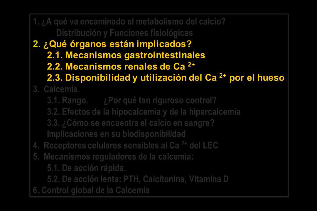 1.¿A qué va encaminado el metabolismo del calcio.