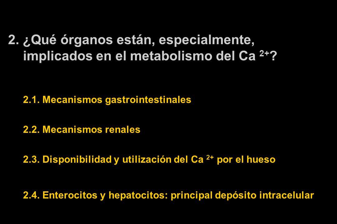 2.¿Qué órganos están, especialmente, implicados en el metabolismo del Ca 2+ .