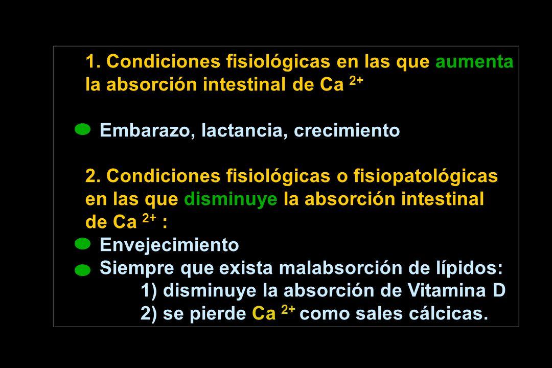 1. Condiciones fisiológicas en las que aumenta la absorción intestinal de Ca 2+ Embarazo, lactancia, crecimiento 2. Condiciones fisiológicas o fisiopa