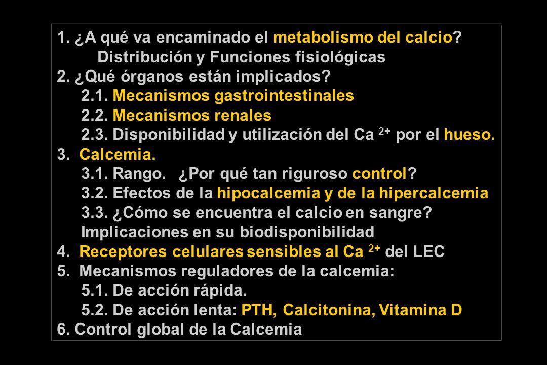 1. ¿A qué va encaminado el metabolismo del calcio? Distribución y Funciones fisiológicas 2. ¿Qué órganos están implicados? 2.1. Mecanismos gastrointes