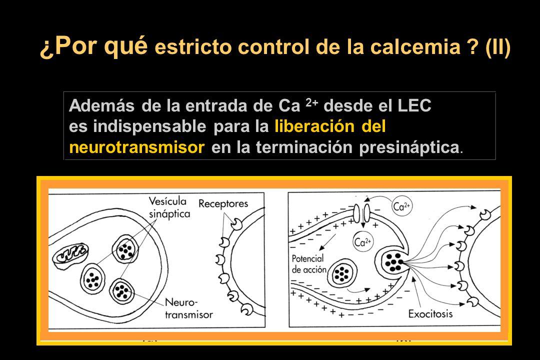 ¿Por qué estricto control de la calcemia ? (II) Además de la entrada de Ca 2+ desde el LEC es indispensable para la liberación del neurotransmisor en