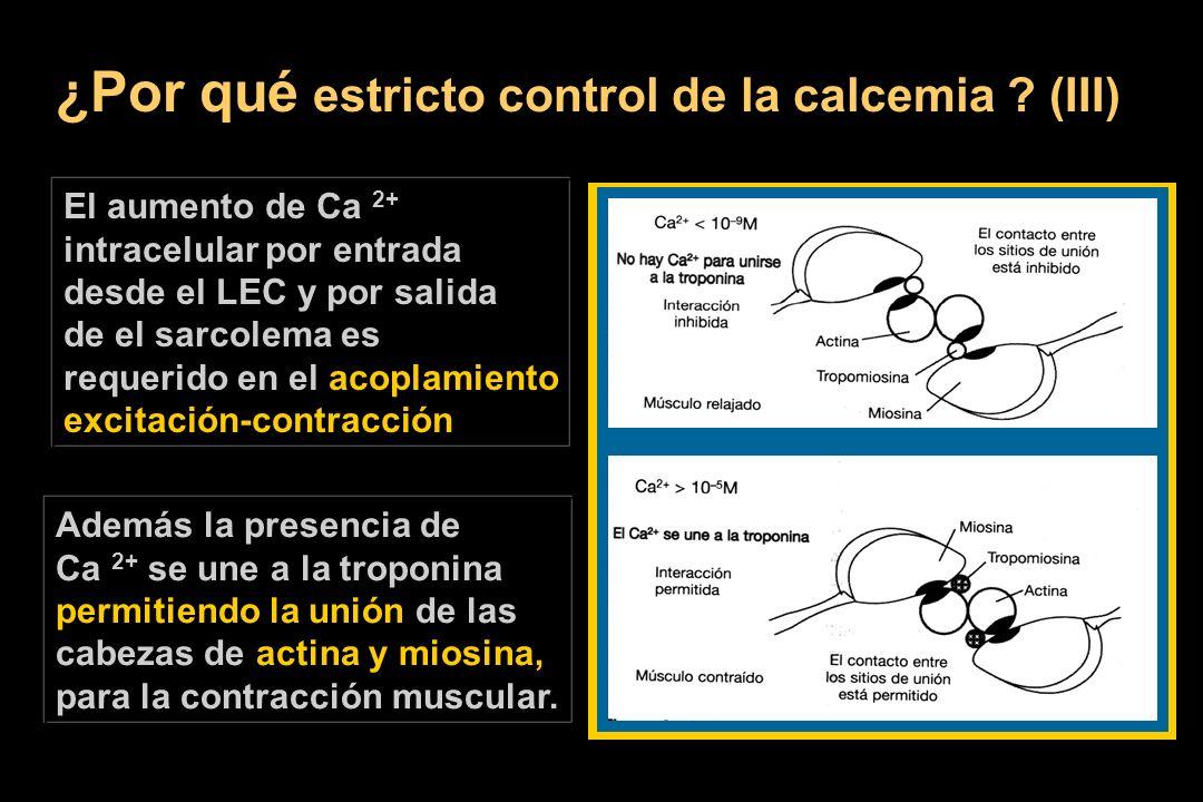 ¿Por qué estricto control de la calcemia ? (III) El aumento de Ca 2+ intracelular por entrada desde el LEC y por salida de el sarcolema es requerido e