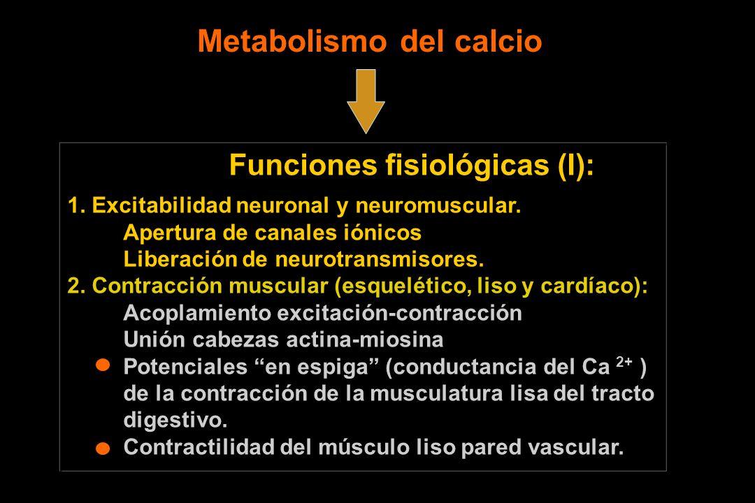Funciones fisiológicas (I): 1. Excitabilidad neuronal y neuromuscular. Apertura de canales iónicos Liberación de neurotransmisores. 2. Contracción mus