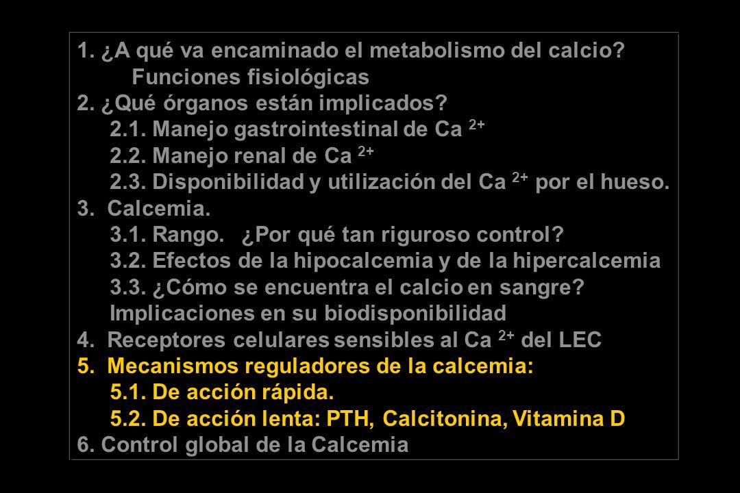 1. ¿A qué va encaminado el metabolismo del calcio? Funciones fisiológicas 2. ¿Qué órganos están implicados? 2.1. Manejo gastrointestinal de Ca 2+ 2.2.