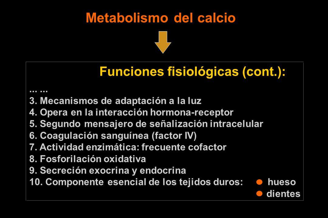 Funciones fisiológicas (cont.):... 3. Mecanismos de adaptación a la luz 4. Opera en la interacción hormona-receptor 5. Segundo mensajero de señalizaci