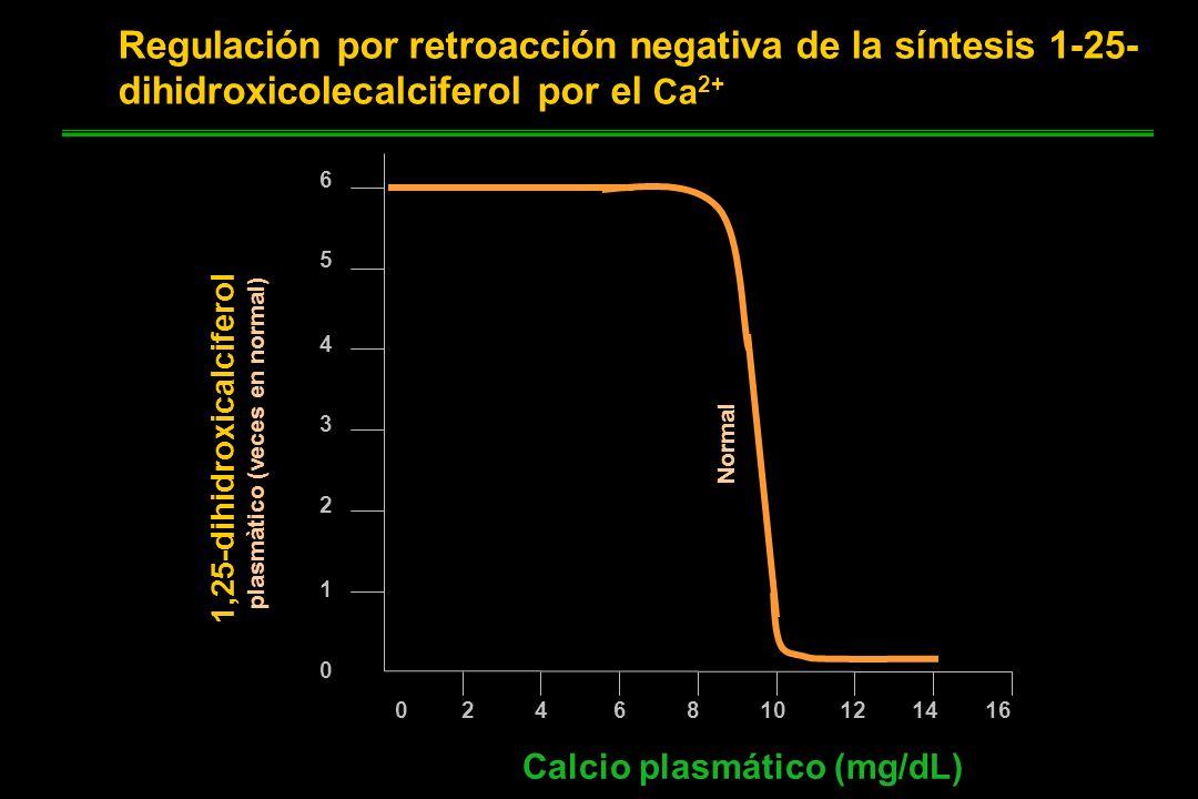 0 2 4 6 8 10 12 14 16 6 5 4 3 2 1 0 Calcio plasmático (mg/dL) Normal 1,25-dihidroxicalciferol plasmàtico (veces en normal) Regulación por retroacción