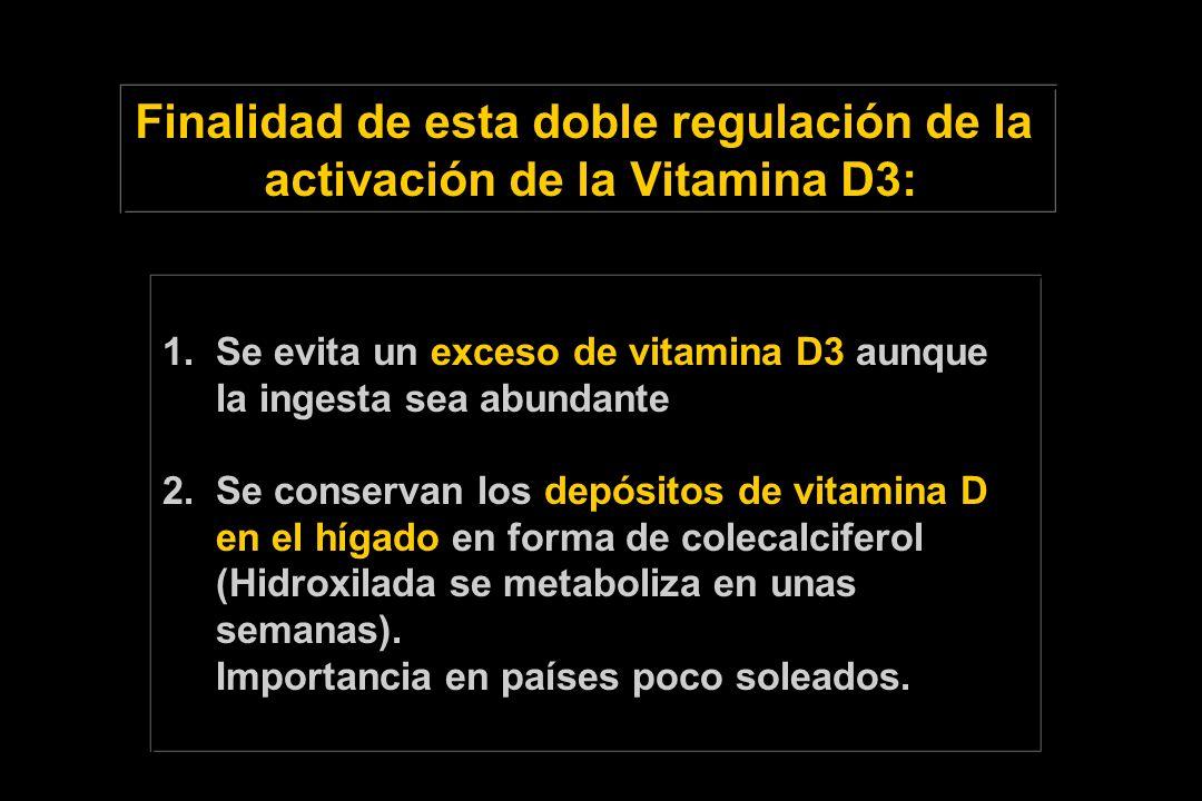 Finalidad de esta doble regulación de la activación de la Vitamina D3: 1. Se evita un exceso de vitamina D3 aunque la ingesta sea abundante 2.Se conse