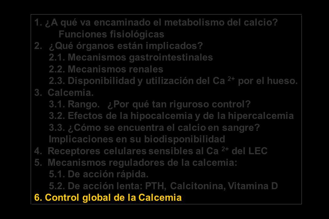 1. ¿A qué va encaminado el metabolismo del calcio? Funciones fisiológicas 2.¿Qué órganos están implicados? 2.1. Mecanismos gastrointestinales 2.2. Mec
