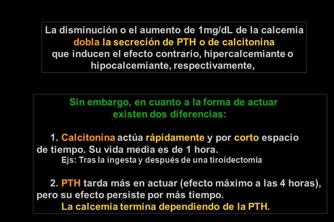 La disminución o el aumento de 1mg/dL de la calcemia dobla la secreción de PTH o de calcitonina que inducen el efecto contrario, hipercalcemiante o hipocalcemiante, respectivamente, Sin embargo, en cuanto a la forma de actuar existen dos diferencias: 1.
