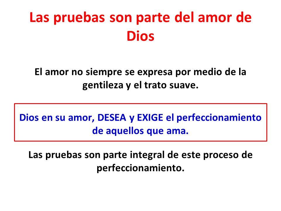 Hebreos 12:4-11 El amor de Dios se expresa de manera semejante al amor de los buenos padres por sus hijos.