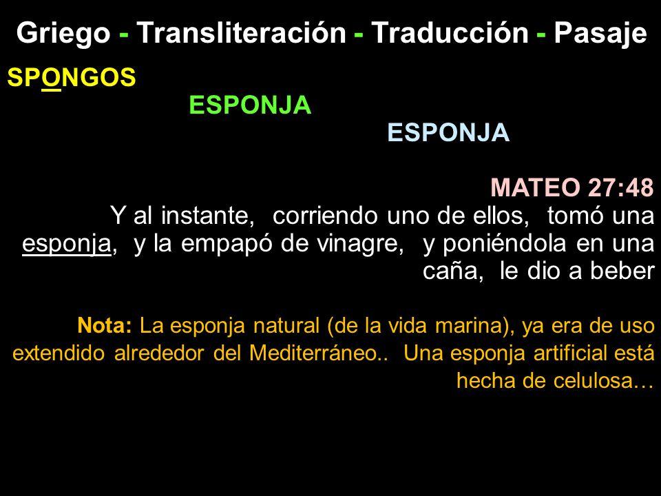 Griego - Transliteración - Traducción - Pasaje SPONGOS ESPONJA MATEO 27:48 Y al instante, corriendo uno de ellos, tomó una esponja, y la empapó de vin