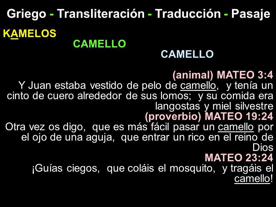Griego - Transliteración - Traducción - Pasaje KAMELOS CAMELLO (animal) MATEO 3:4 Y Juan estaba vestido de pelo de camello, y tenía un cinto de cuero