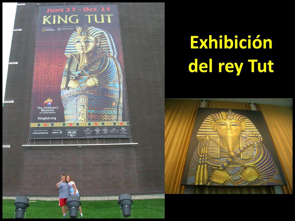 Exhibición del rey Tut