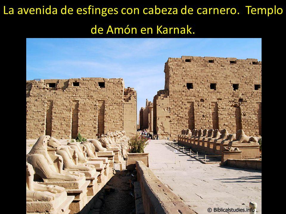 La avenida de esfinges con cabeza de carnero. Templo de Amón en Karnak.