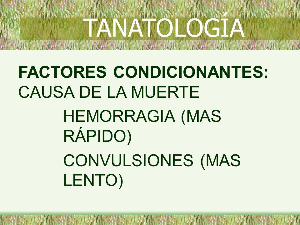 FACTORES CONDICIONANTES: CAUSA DE LA MUERTE HEMORRAGIA (MAS RÁPIDO) CONVULSIONES (MAS LENTO) TANATOLOGÍA