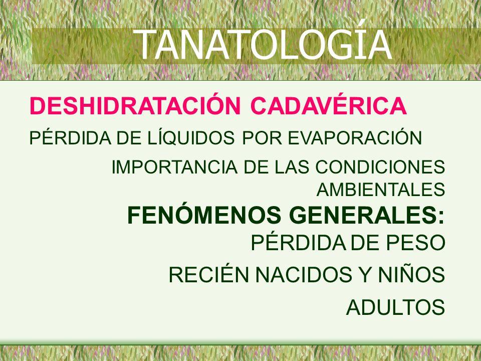 DESHIDRATACIÓN CADAVÉRICA PÉRDIDA DE LÍQUIDOS POR EVAPORACIÓN IMPORTANCIA DE LAS CONDICIONES AMBIENTALES FENÓMENOS GENERALES: PÉRDIDA DE PESO RECIÉN N