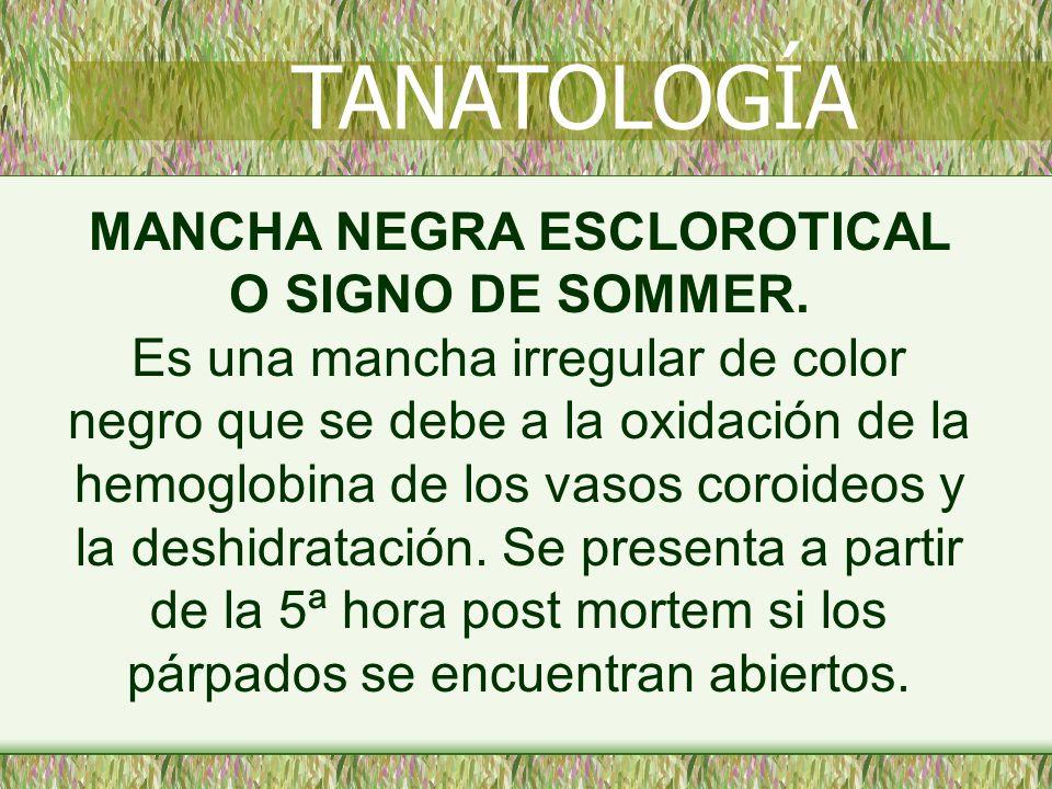 MANCHA NEGRA ESCLOROTICAL O SIGNO DE SOMMER. Es una mancha irregular de color negro que se debe a la oxidación de la hemoglobina de los vasos coroideo