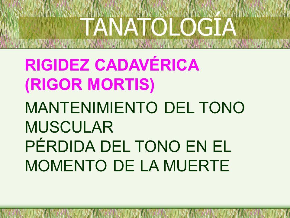 RIGIDEZ CADAVÉRICA (RIGOR MORTIS) MANTENIMIENTO DEL TONO MUSCULAR PÉRDIDA DEL TONO EN EL MOMENTO DE LA MUERTE TANATOLOGÍA
