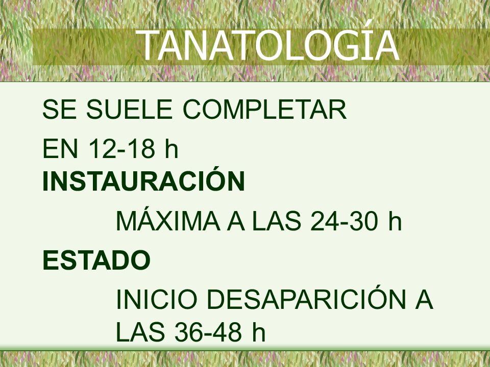 SE SUELE COMPLETAR EN 12-18 h INSTAURACIÓN MÁXIMA A LAS 24-30 h ESTADO INICIO DESAPARICIÓN A LAS 36-48 h TANATOLOGÍA