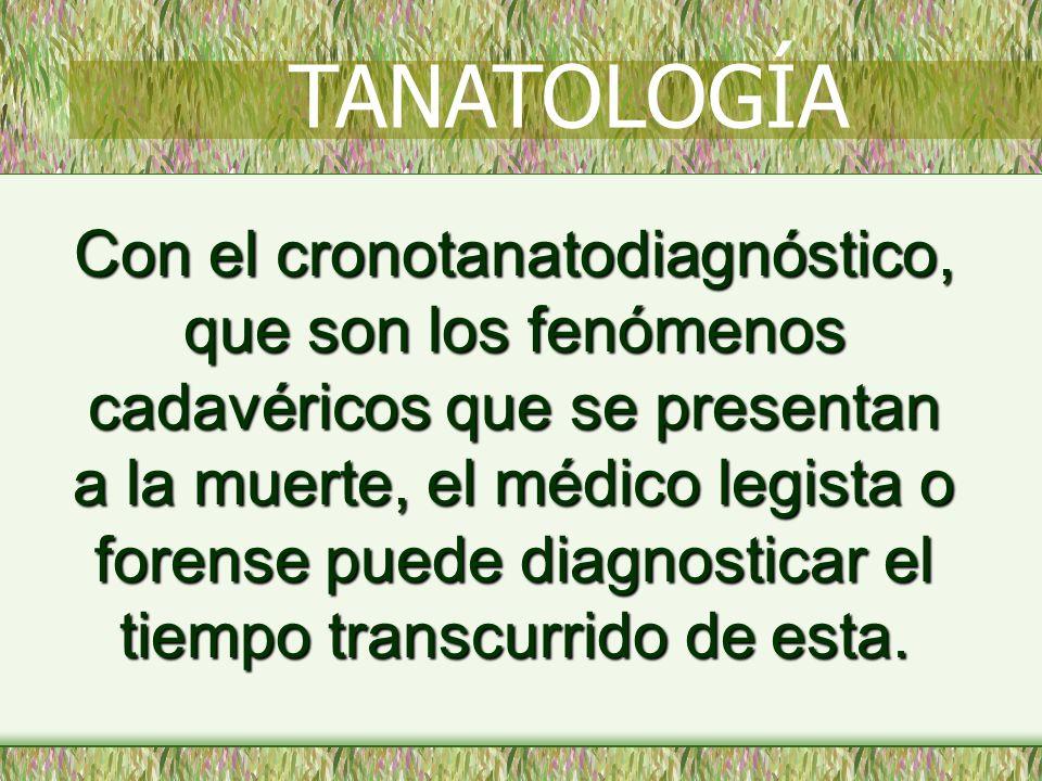 DESECACIÓN DE LAS MUCOSAS * LABIOS * GENITALES TANATOLOGÍA