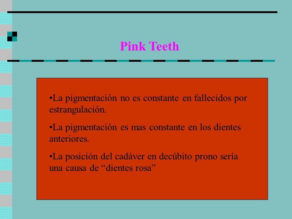 Pink Teeth La pigmentación no es constante en fallecidos por estrangulación. La pigmentación es mas constante en los dientes anteriores. La posición d
