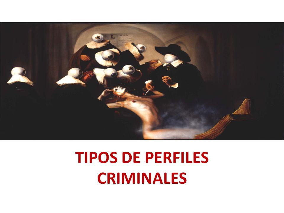 TIPOS DE PERFILES CRIMINALES