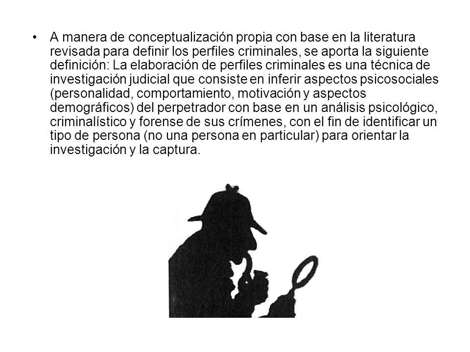A manera de conceptualización propia con base en la literatura revisada para definir los perfiles criminales, se aporta la siguiente definición: La el