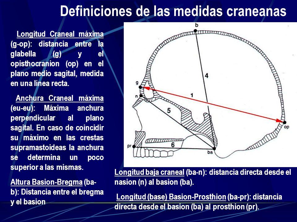 Definiciones de las medidas craneanas Longitud Craneal máxima (g-op): distancia entre la glabella (g) y el opisthocranion (op) en el plano medio sagit