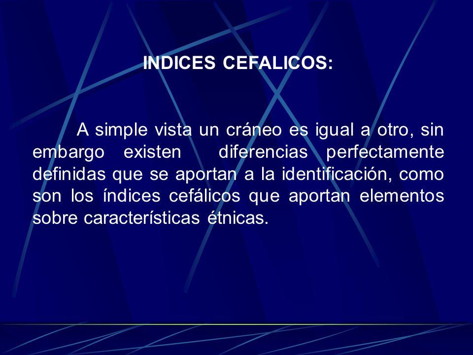INDICES CEFALICOS: A simple vista un cráneo es igual a otro, sin embargo existen diferencias perfectamente definidas que se aportan a la identificació