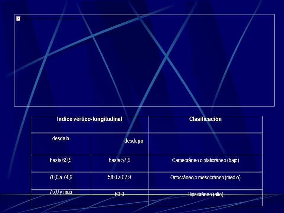 Indice vértico-longitudinalClasificación desde b desde po hasta 69,9hasta 57,9Camecráneo o platicráneo (bajo) 70,0 a 74,958,0 a 62,9Ortocráneo o mesoc