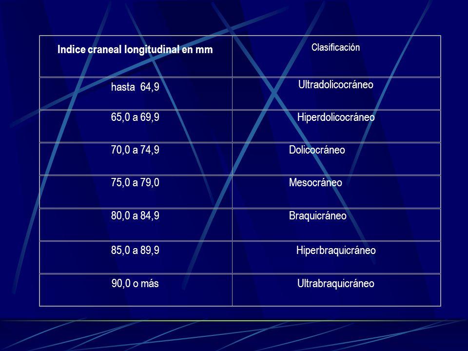Indice craneal longitudinal en mm Clasificación hasta 64,9 Ultradolicocráneo 65,0 a 69,9Hiperdolicocráneo 70,0 a 74,9Dolicocráneo 75,0 a 79,0Mesocráne