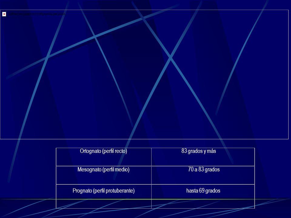 Ortognato (perfil recto) 83 grados y más Mesognato (perfil medio) 70 a 83 grados Prognato (perfil protuberante) hasta 69 grados