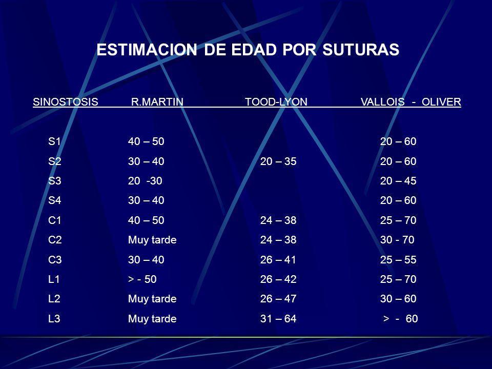 ESTIMACION DE EDAD POR SUTURAS SINOSTOSIS R.MARTIN TOOD-LYON VALLOIS - OLIVER S140 – 50 20 – 60 S230 – 40 20 – 35 20 – 60 S320 -30 20 – 45 S430 – 40 2