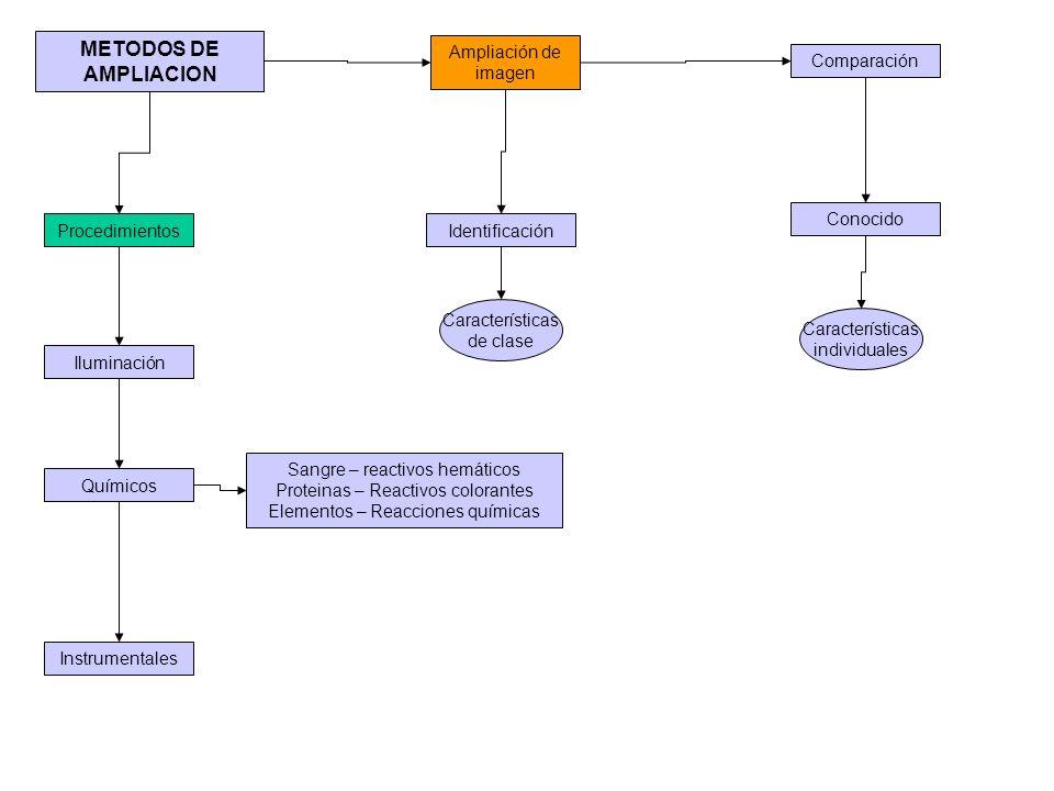 METODOS DE AMPLIACION Procedimientos Iluminación Instrumentales Ampliación de imagen Identificación Sangre – reactivos hemáticos Proteinas – Reactivos