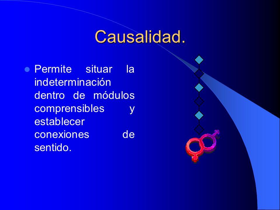 Causalidad. Permite situar la indeterminación dentro de módulos comprensibles y establecer conexiones de sentido.