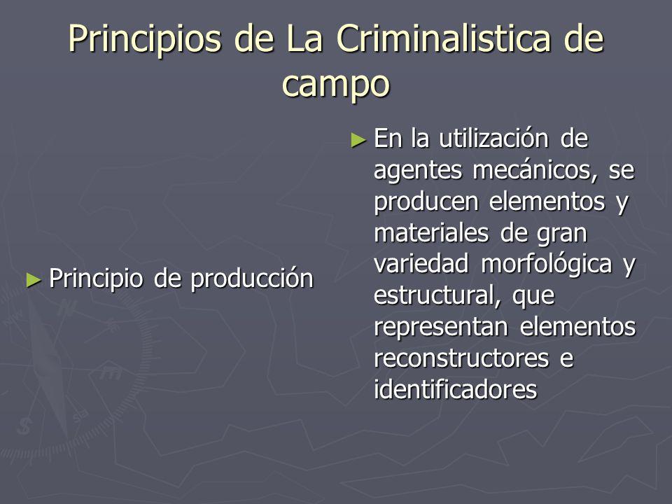 Principio de producción Principio de producción En la utilización de agentes mecánicos, se producen elementos y materiales de gran variedad morfológic