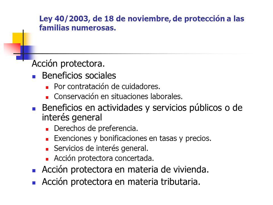 Ley 40/2003, de 18 de noviembre, de protección a las familias numerosas. Acción protectora. Beneficios sociales Por contratación de cuidadores. Conser