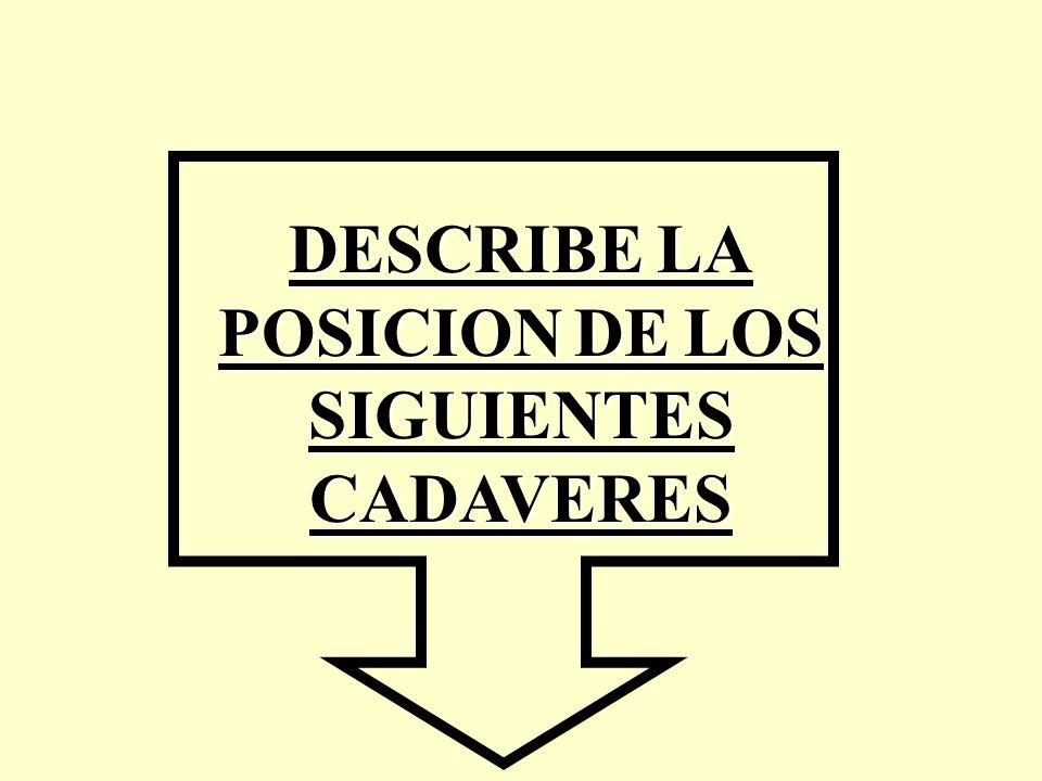 DESCRIBE DESCRIBE LA POSICION POSICION DE DE LOS SIGUIENTES CADAVERES