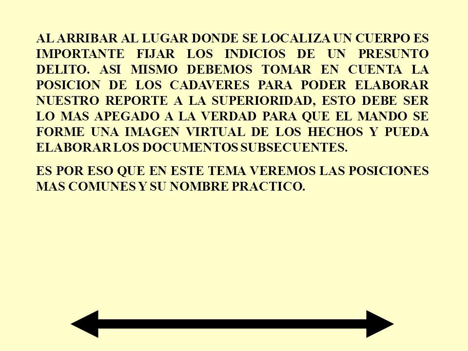 GLOSARIO DE TERMINOS POSICION POSTURA, SITUACION, DISPOSICION.