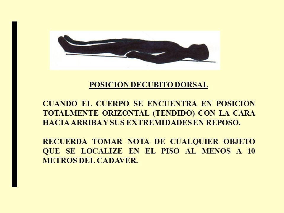 POSICION DECUBITO DORSAL CUANDO EL CUERPO SE ENCUENTRA EN POSICION TOTALMENTE ORIZONTAL (TENDIDO) CON LA CARA HACIA ARRIBA Y SUS EXTREMIDADES EN REPOS
