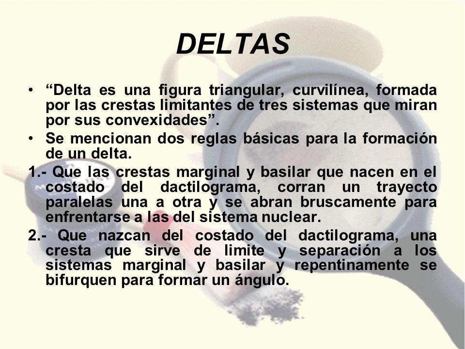 DELTAS Delta es una figura triangular, curvilínea, formada por las crestas limitantes de tres sistemas que miran por sus convexidades. Se mencionan do