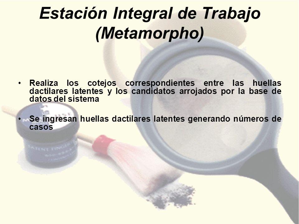 Estación Integral de Trabajo (Metamorpho) Realiza los cotejos correspondientes entre las huellas dactilares latentes y los candidatos arrojados por la