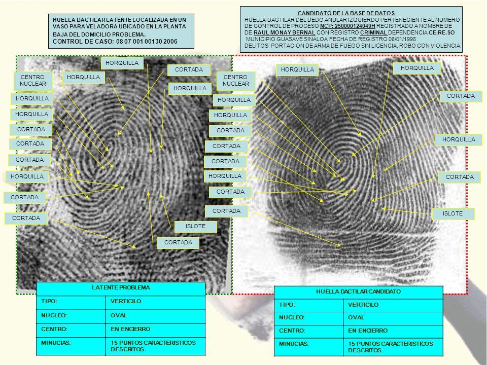 HUELLA DACTILAR LATENTE LOCALIZADA EN UN VASO PARA VELADORA UBICADO EN LA PLANTA BAJA DEL DOMICILIO PROBLEMA. CONTROL DE CASO: 08 07 001 00130 2006 CA