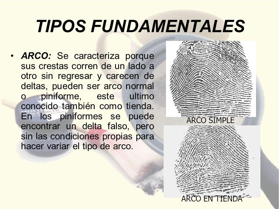 EJEMPLO REAL Captura de la huella dactilar perteneciente al dedo índice la cual es sometida a búsqueda en la base de datos del sistema AFIS a nivel nacional.