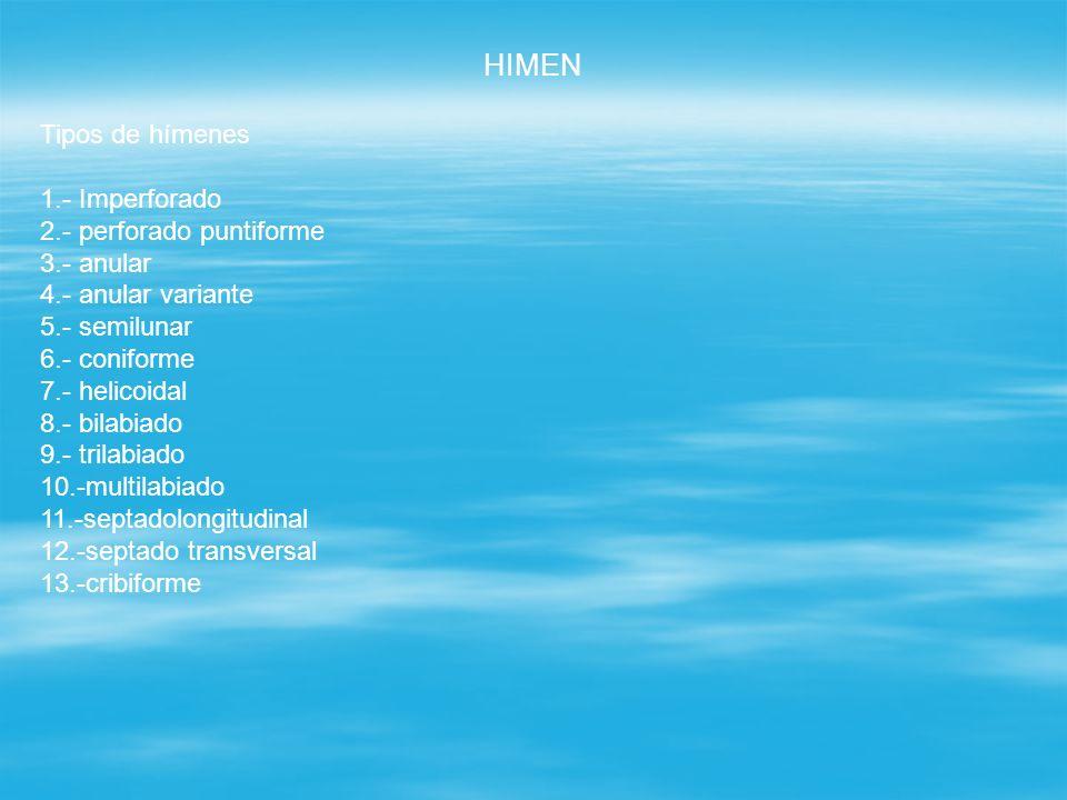HIMEN Tipos de hímenes 1.- Imperforado 2.- perforado puntiforme 3.- anular 4.- anular variante 5.- semilunar 6.- coniforme 7.- helicoidal 8.- bilabiad