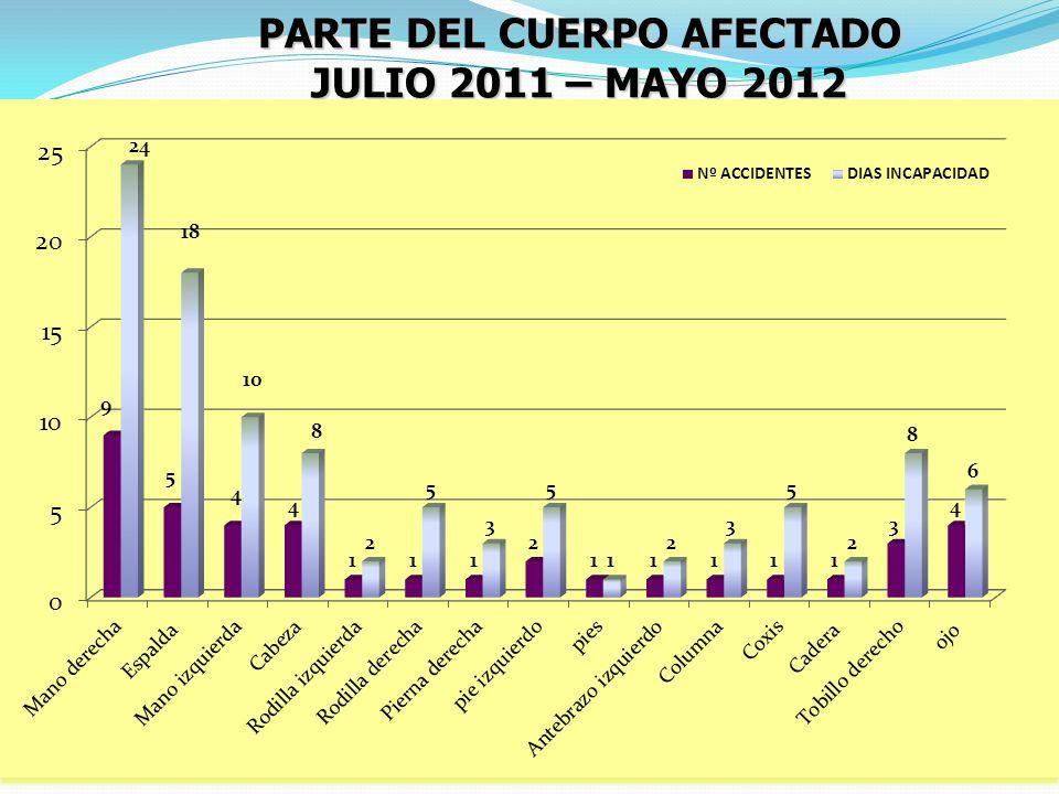 PARTE DEL CUERPO AFECTADO JULIO 2011 – MAYO 2012