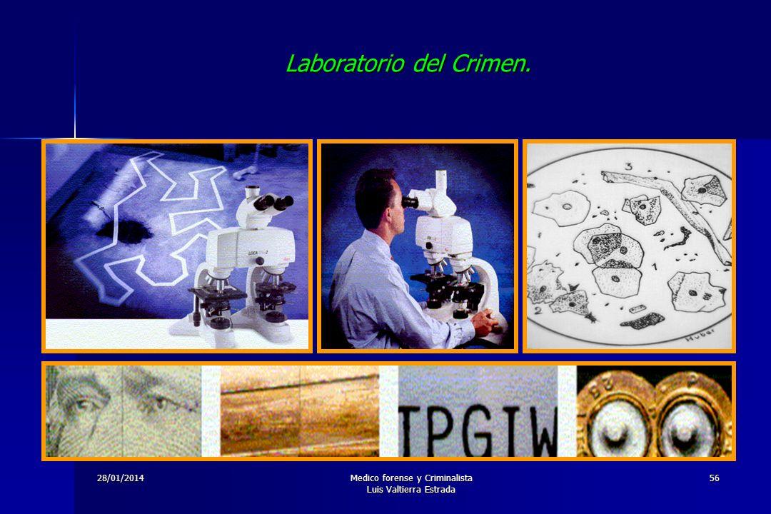28/01/2014Medico forense y Criminalista Luis Valtierra Estrada 56 Laboratorio del Crimen.